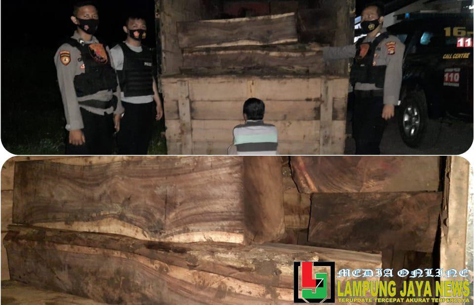 Diduga Melakukan Tindak Pidana Illegal Loging, 3 Pelaku Berhasil diamankan Polisi